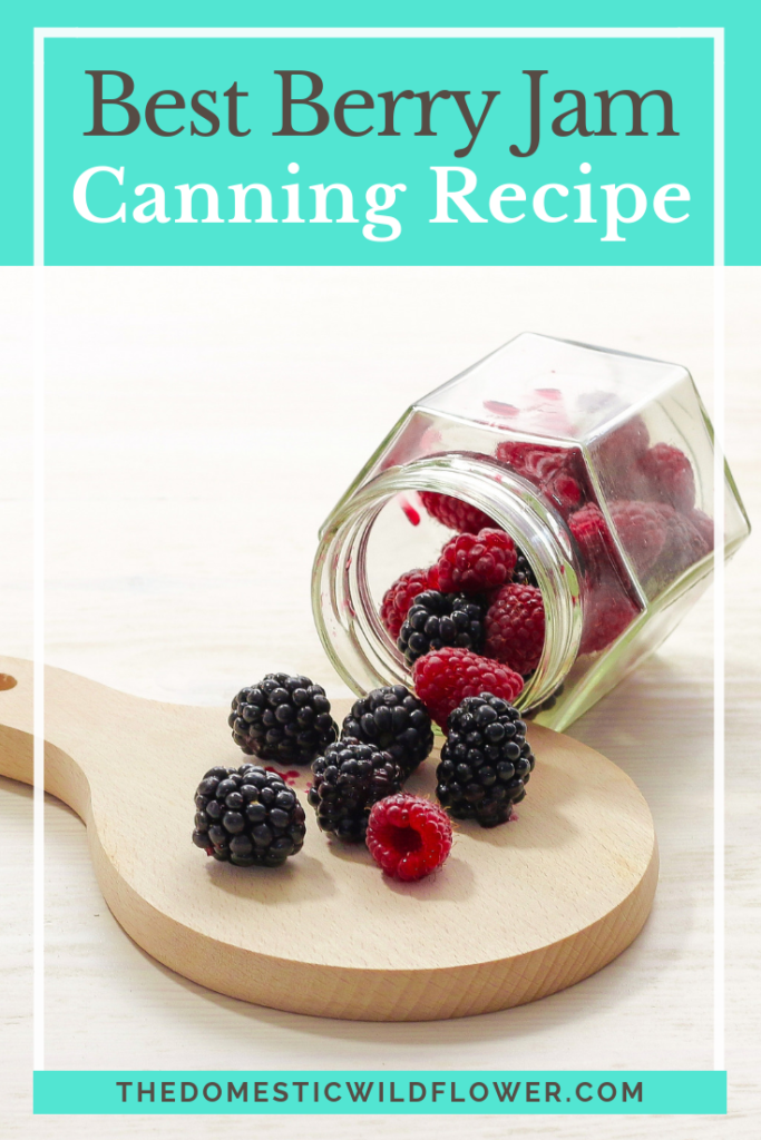 20 Back to School Recipes