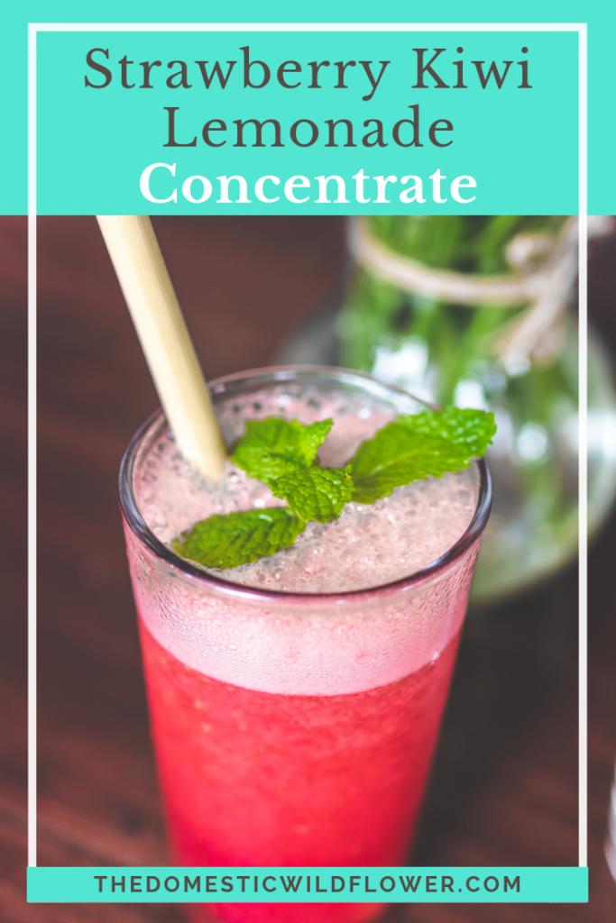 Strawberry Kiwi Lemonade Concentrate