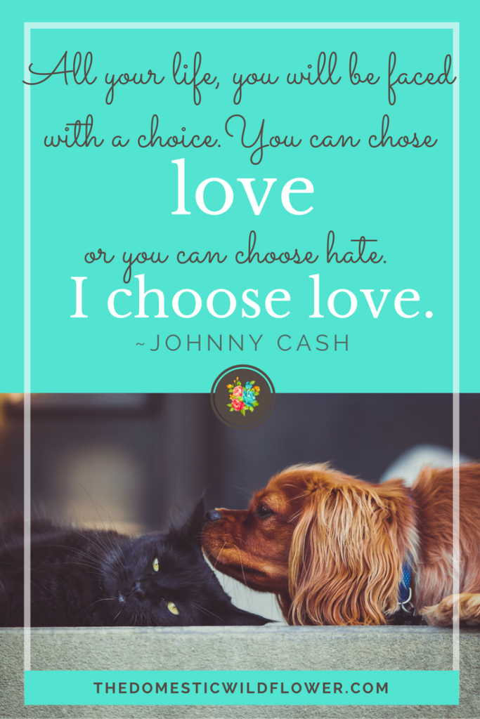 Choose Love   19 Inspirational Quotes for Country Girls   The Domestic Wildflower click through to read this awesome post! These encouraging and inspirational quotes explain what it means to have the heart of a country girl.