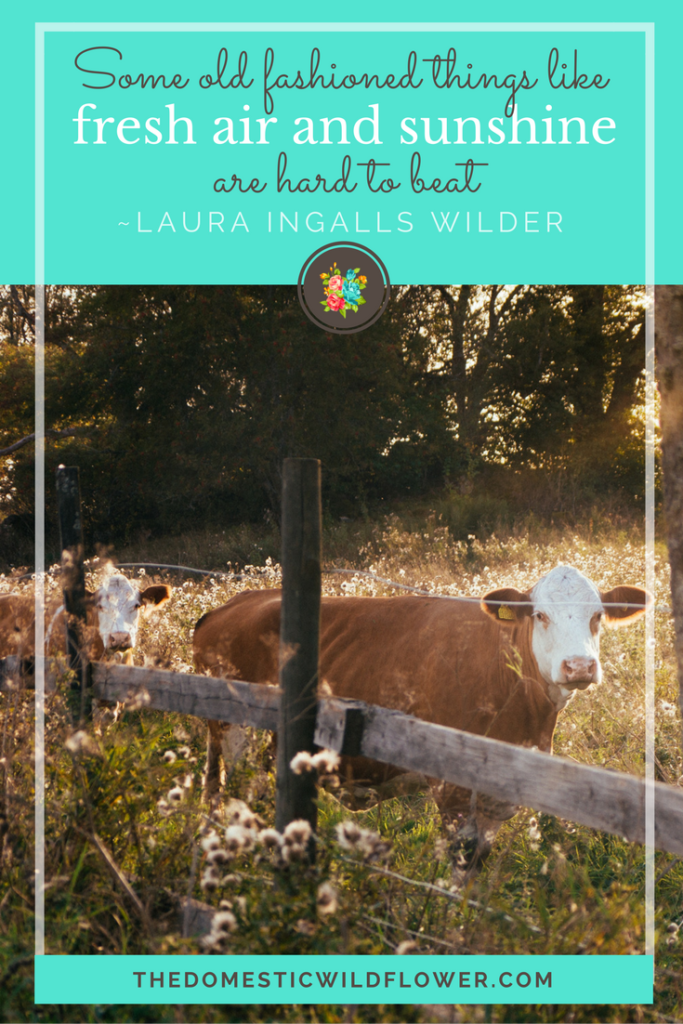 Some old fashioned things like fresh air and sunshine are hard to beat. 19 Inspirational Quotes for Country Girls | The Domestic Wildflower click through to read this awesome post! These encouraging and inspirational quotes explain what it means to have the heart of a country girl.