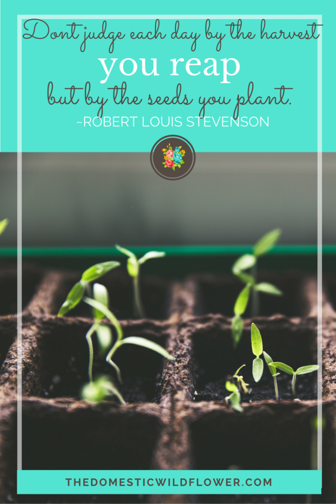 Don't judge each day by the harvest you reap but by the seeds you plant   19 Inspirational Quotes for Country Girls   The Domestic Wildflower click through to read this awesome post! These encouraging and inspirational quotes explain what it means to have the heart of a country girl.