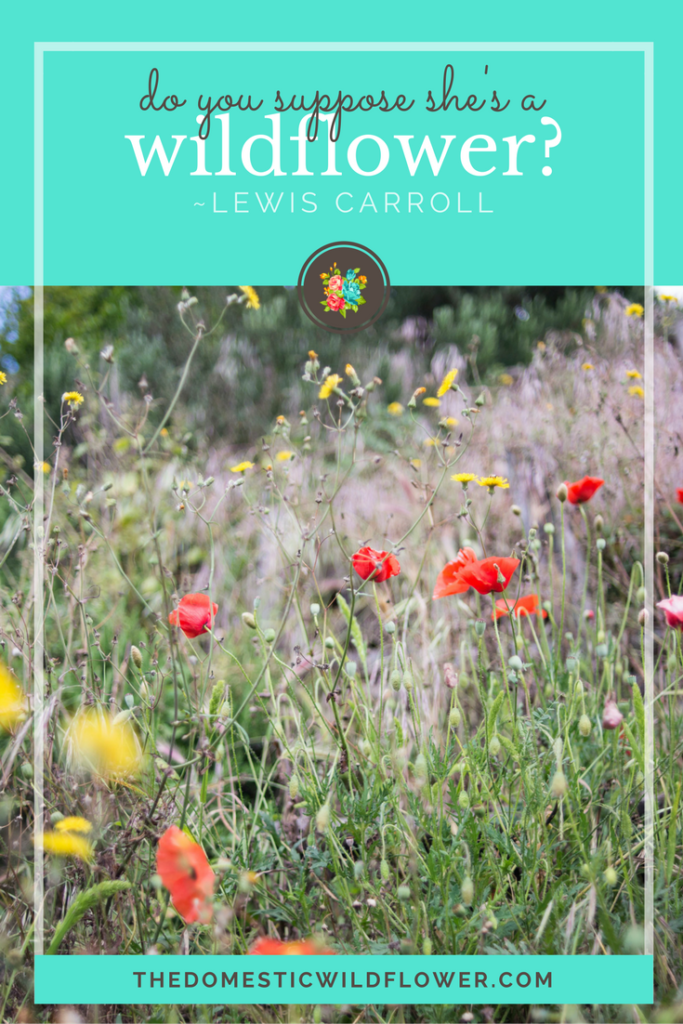 Do you suppose she's a Wildflower?   19 Inspirational Quotes for Country Girls   The Domestic Wildflower click through to read this awesome post! These encouraging and inspirational quotes explain what it means to have the heart of a country girl.