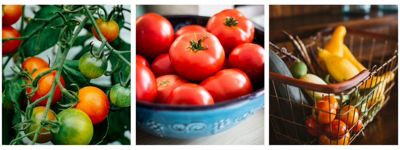 Tomato Sauce - A Kid friendly canning recipe!