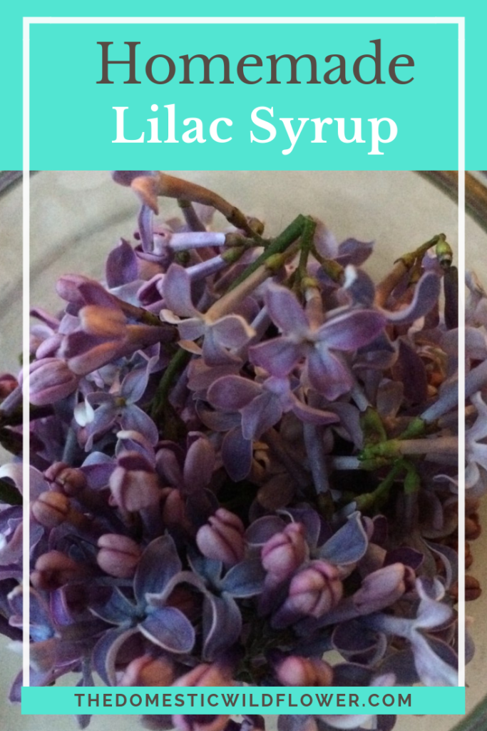 How To Make Lilac Syrup