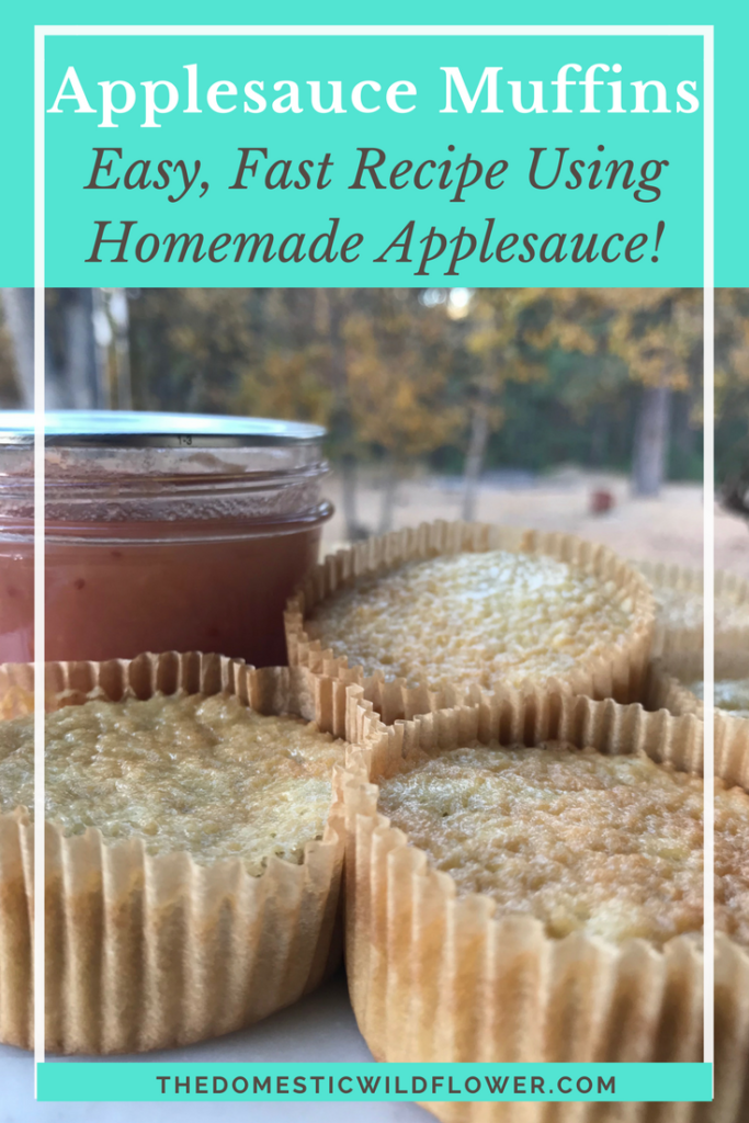 Such a great applesauce muffin recipe! Easy and fast and my kids love them!
