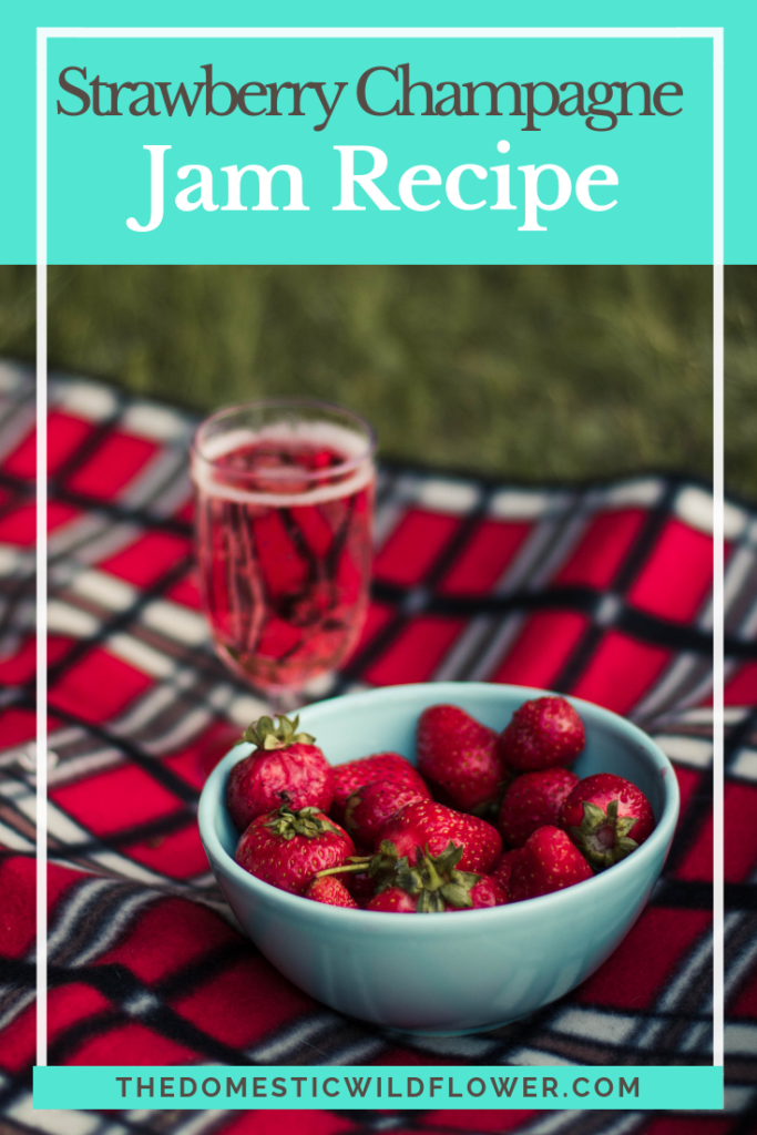 Best Jam Canning Recipes