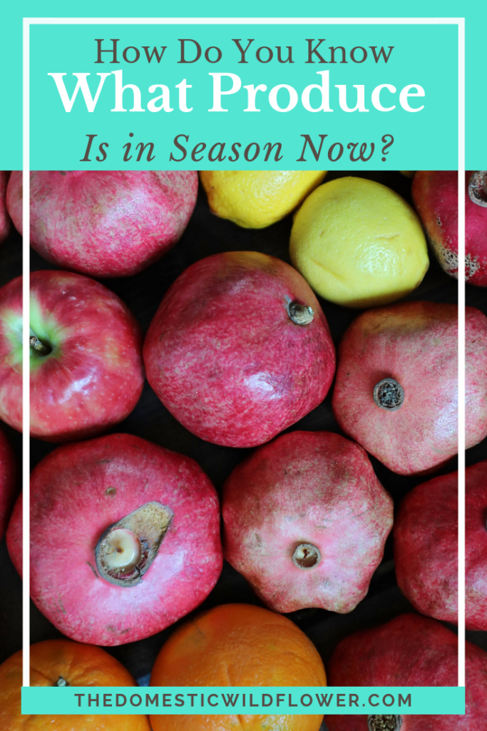 How Do You Know What Produce is In Season Now? This graphic is so helpful!