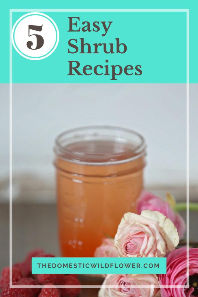 5 Easy Shrub Recipes