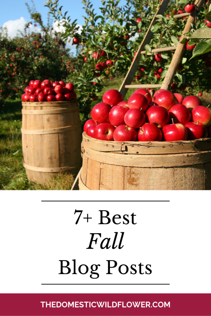 7 Best Fall Blog Posts from The Domestic Wildflower
