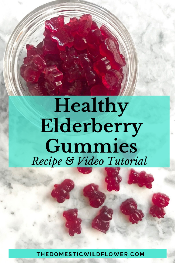 Healthy Elderberry Gummies Recipe