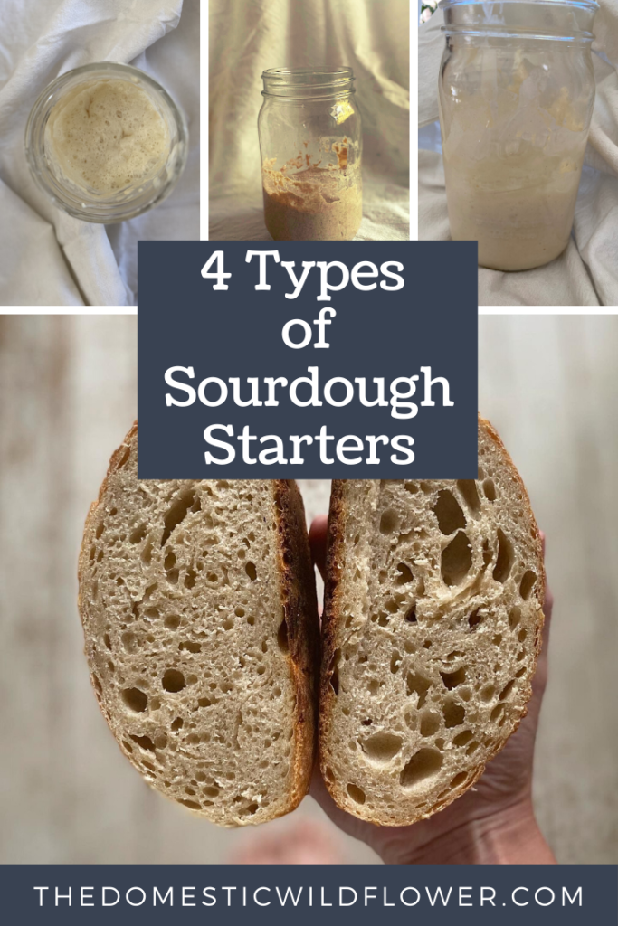 4 Types of Sourdough Starter