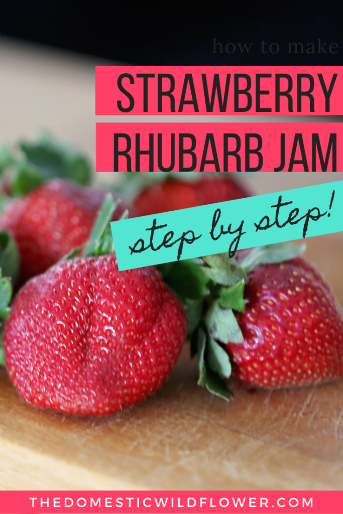 Strawberry Rhubarb Jam Canning Recipe