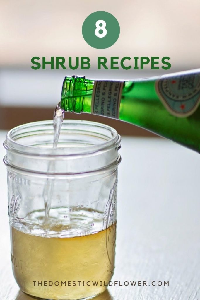 8 Shrub Recipes